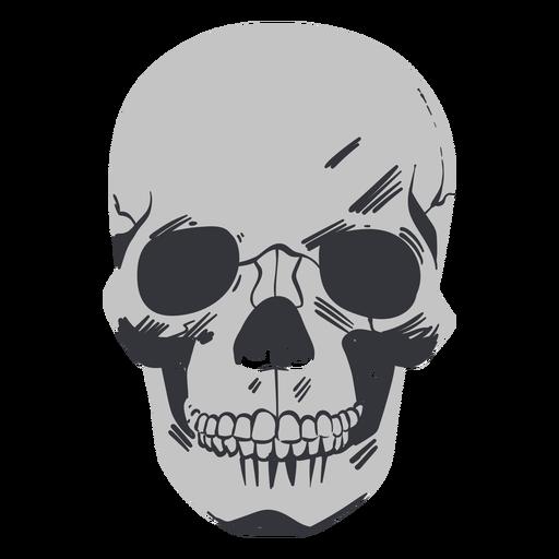 Cráneo frontal plano