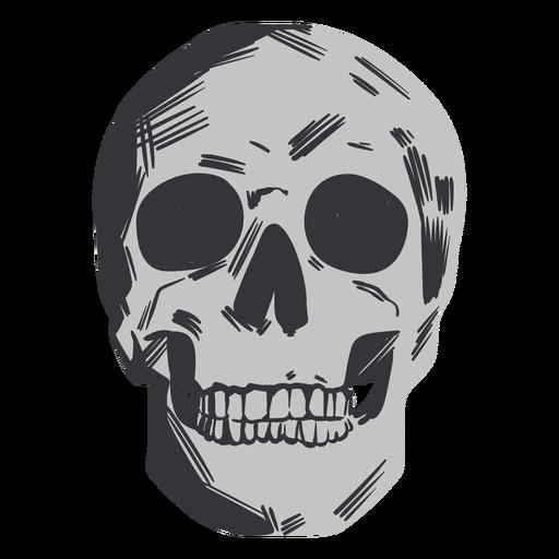 Skull looking up flat