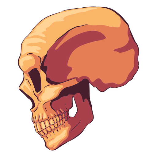Side view skull illustration