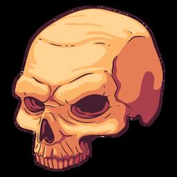 Ilustración de cráneo incompleta
