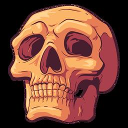 Buscando ilustración de cráneo