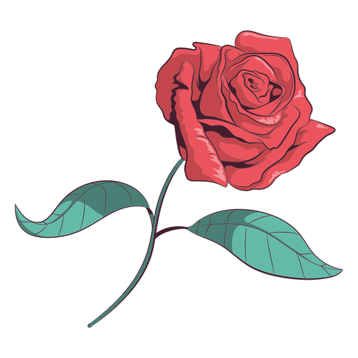 Ilustração de flor rosa