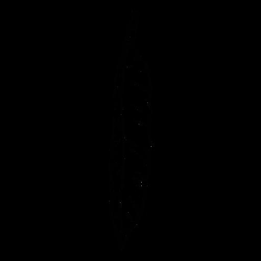 Calaveras - 38