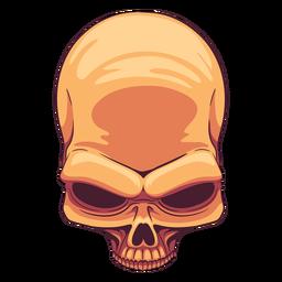 Ilustración de cráneo de vista superior