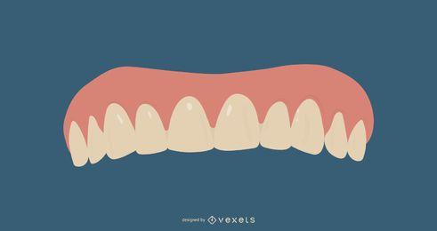 Dentures Illustration Design