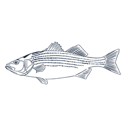 Fish profile line art