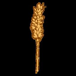 Small wheat spike illustration