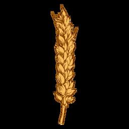 Long wheat spike illustration
