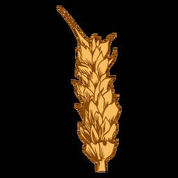 Close-up wheat spike illustration