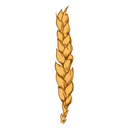 Wheat spike design