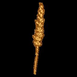 Wheat grain illustration