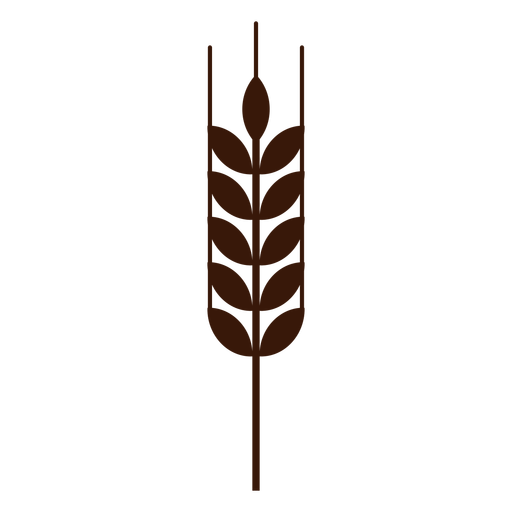 Wheat spike monochrome flat