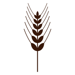 Wheat spike lines cut-out