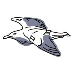 Rabisco de pássaro gaivota