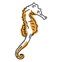 Doodle de animales marinos de caballito de mar