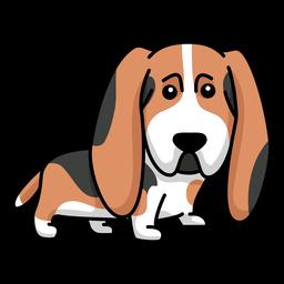 Perro orejas grandes planas