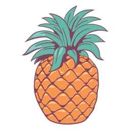 Colored hand drawn detailed pineapple