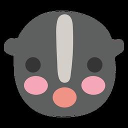 Raccoon cute animal
