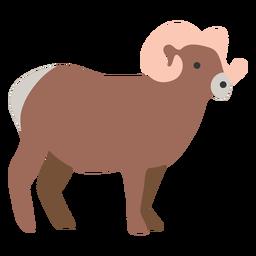 Goat cute animal farm
