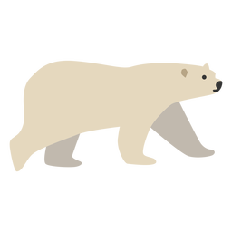 Polar bear animal walking