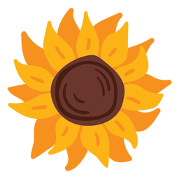 Sunflower bloom flat