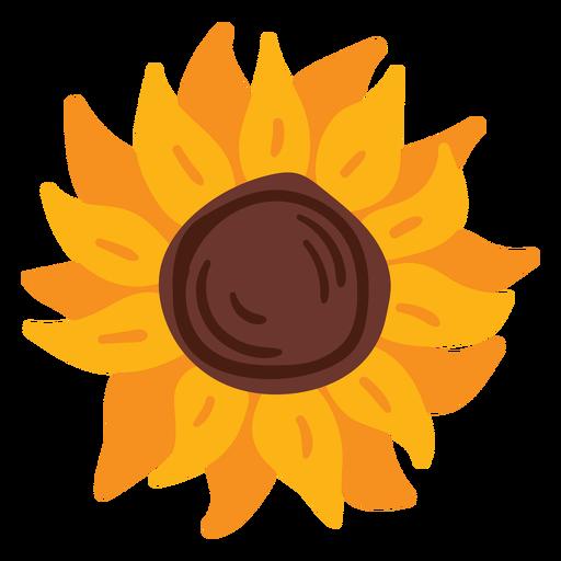 Sunflower bloom flat