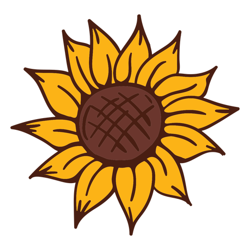 Natureza flor de girassol