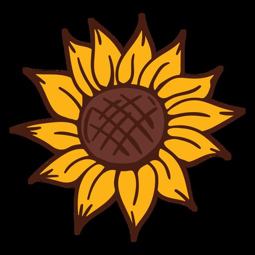 Sunflower bloom nature Transparent PNG