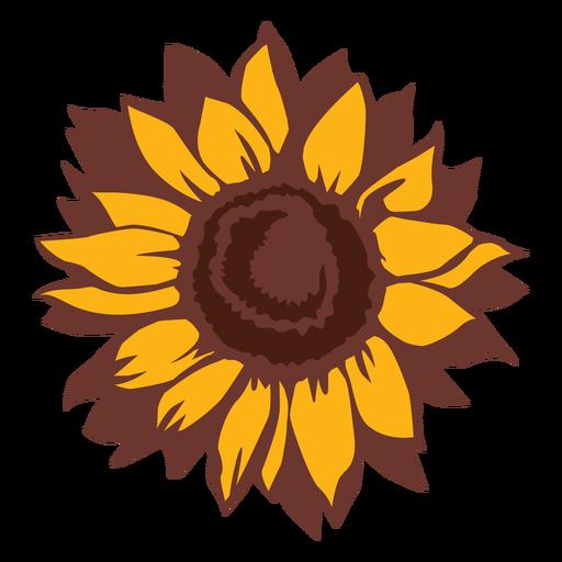 Girassol flor da natureza desenhada à mão