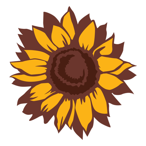 Sunflower nature bloom hand drawn Transparent PNG