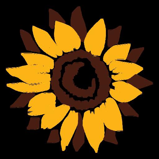 Flor recortada de girassol