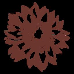 Sunflower high contrast