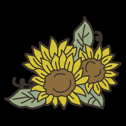 Sunflower garden leaves