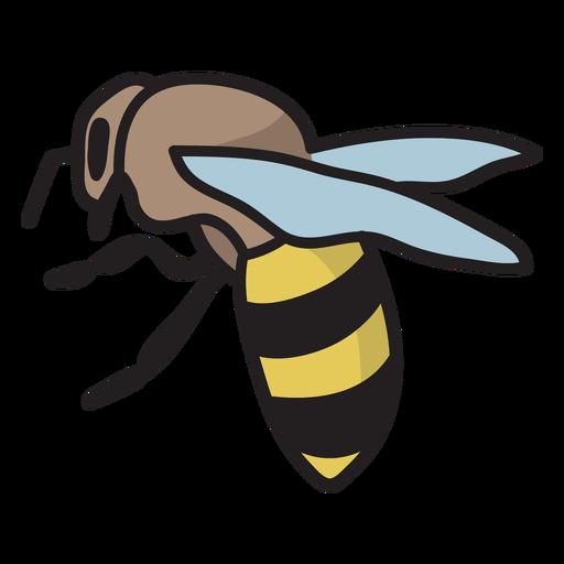 Honey bee semi flat stroke