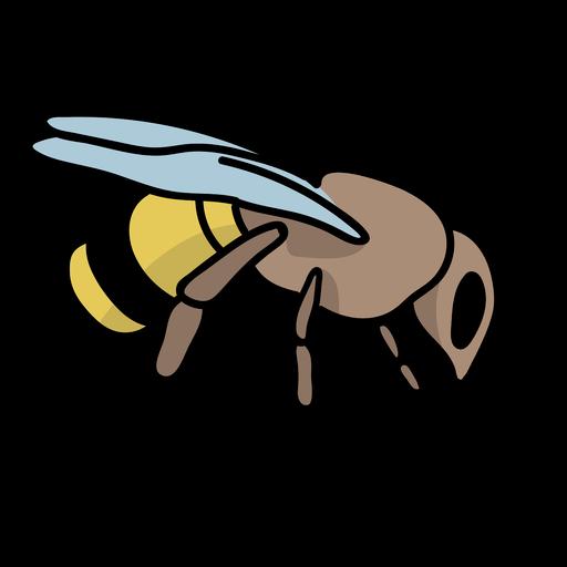 Semi flat honey bee