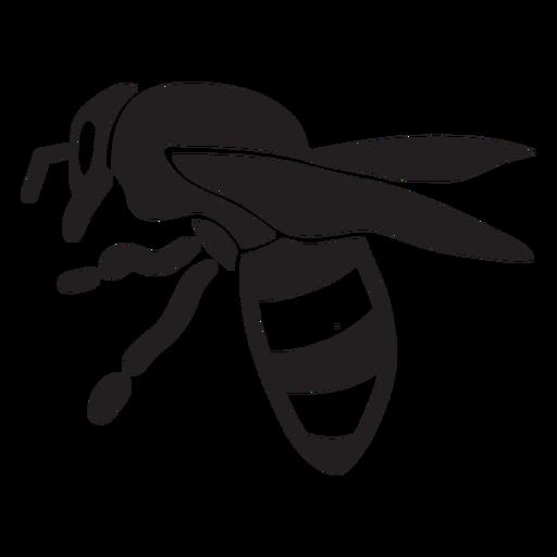 Honey bee silhouette stroke