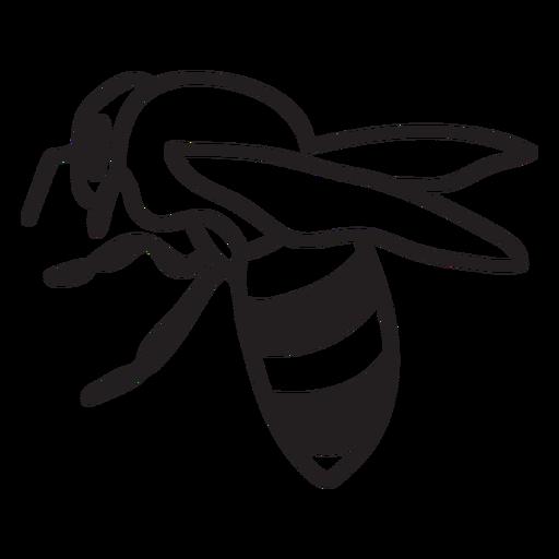 Simple filled stroke back honey bee