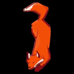 Fox cute animal walking