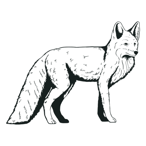 Dibujado a mano lindo animal zorro