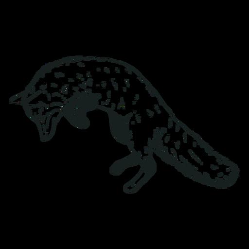 Fox animal jumping hand-drawn