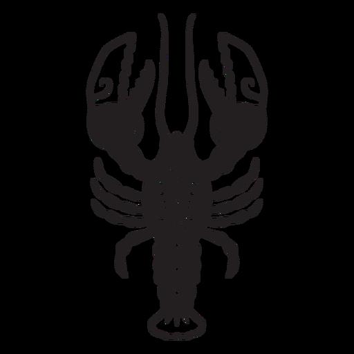 Lobster ocean sea animal