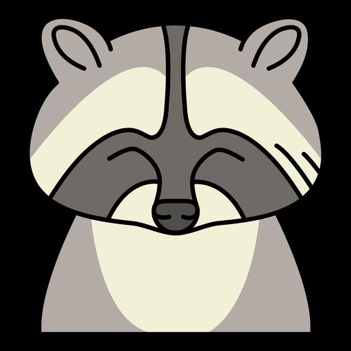 Raccoon wild animal front-view