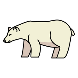 Polar bear wild animal walking