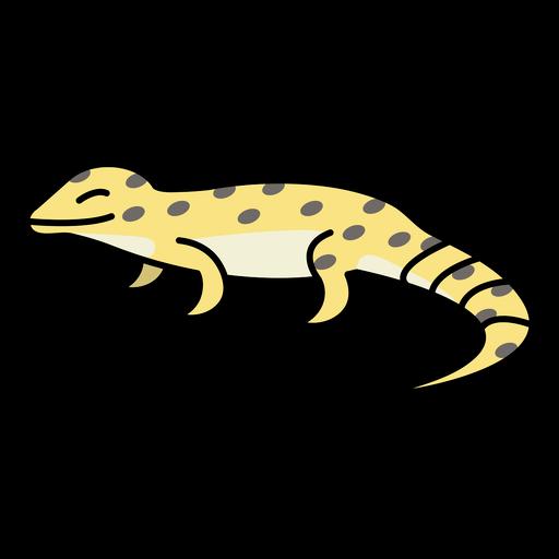 Happy lizard reptile