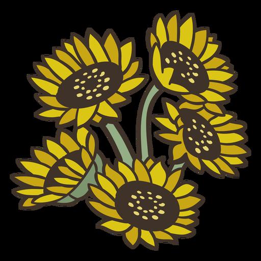 Semi flat sunflowers boquet