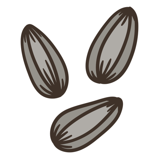 Semi flat sunflower seeds