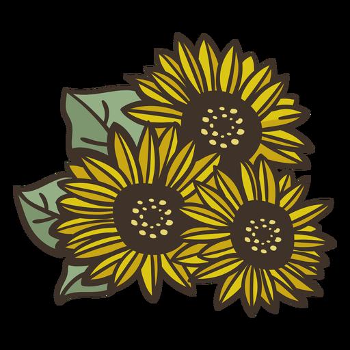 Semi flat sunflowers drawing