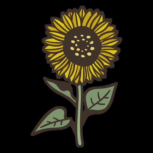 Stroke semi flat sunflower element