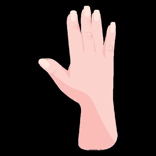 Raised semi flat open hand sign