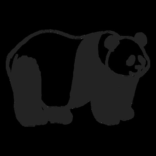 Oso panda adulto